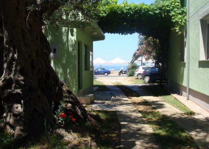 Camp Oliva