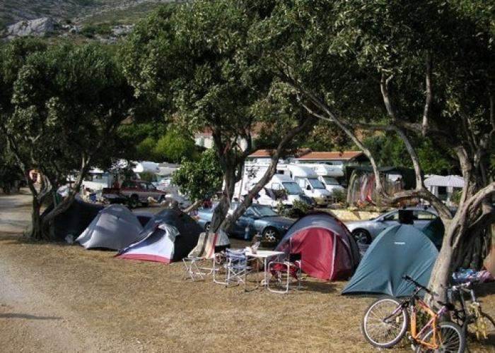 Camping Palme