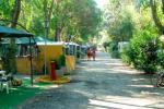 New Camping Le Tamerici